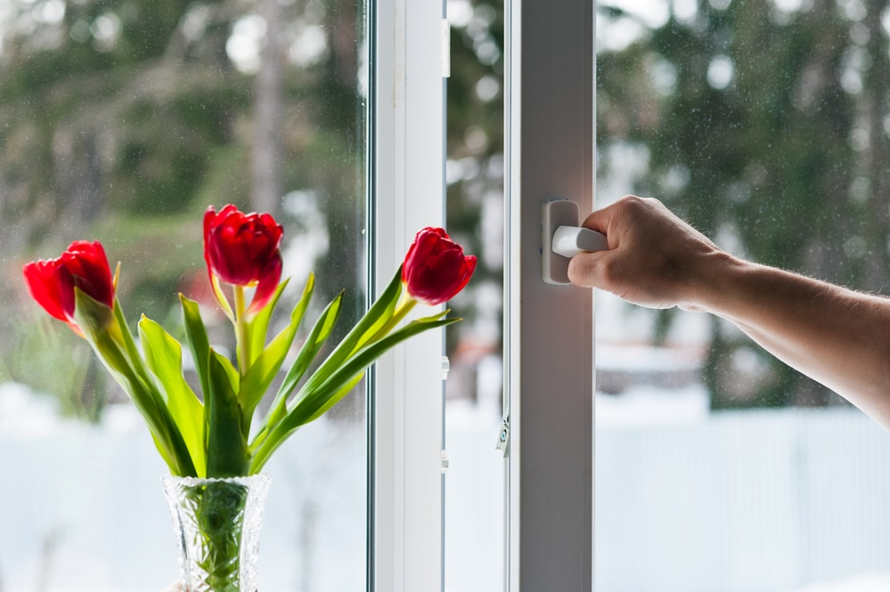 Do Your Windows Need Reglazing