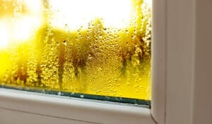 Foggy Windows: What is Causing Them and What You Can Do