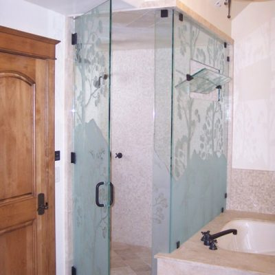 Etched-Euro-Shower-Door